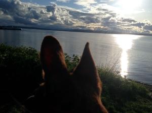 Sunset through Hanni's eyes